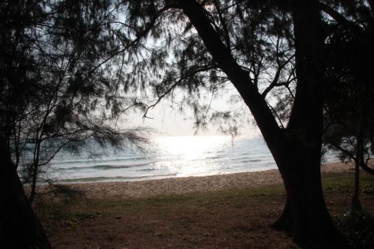 lazy_beach 1